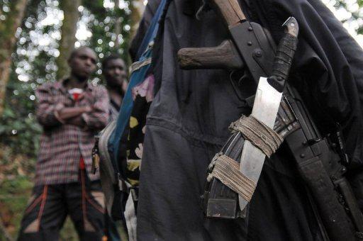 RDC: la société civile du Nord-Kivu dénonce les attaques meurtrières de rebelles rwandais (FDLR)