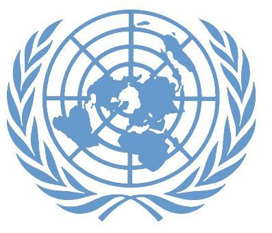RDC : à quoi rime l'inaction de la Monusco contre les FDLR ?