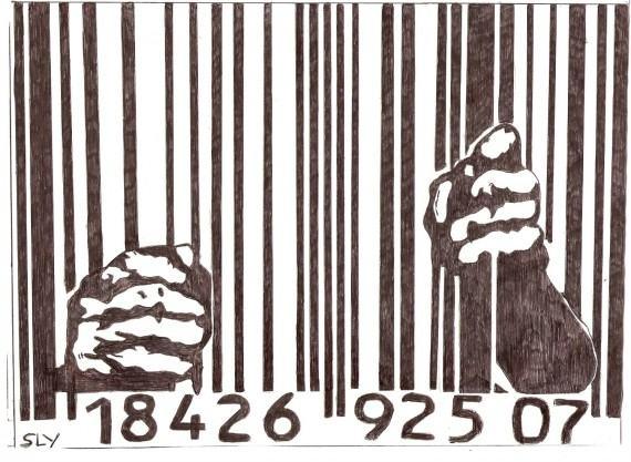RDC : trop de prisonniers en détention préventive