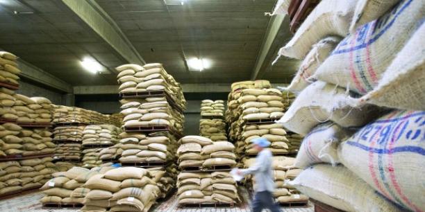 Le Rwanda met les bouchées doubles pour augmenter sa production de café