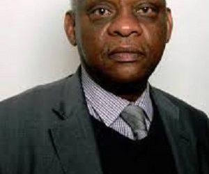 PANAFRICANISME : De l'Afrique et de ses «Amis» en Terre Occidentale