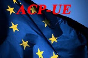 UNION EUROPEENNE : Les Habits Neuf du Colonialisme : les Accords de Partenariat Economique Entre l'UE et l'Afrique
