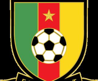 Cameroun: Le Cameroun bat le Rwanda (81-77) et se qualifie pour les quarts de finale de l'Afro basket masculin Sénégal-Tunisie 2017.