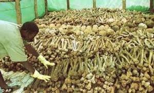 BRUXELLES : Une Loi qui Vise à Réprimer la Négation du Génocide Contre les Tutsi