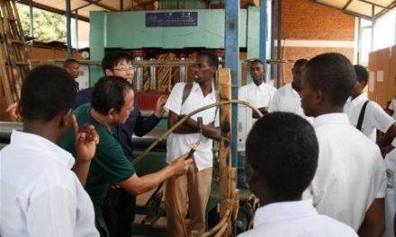 Des experts chinois aident le Rwanda à mieux utiliser le bambou