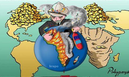 Afrique : Les grandes ONG seraient-elles néfastes pour l'Afrique ?