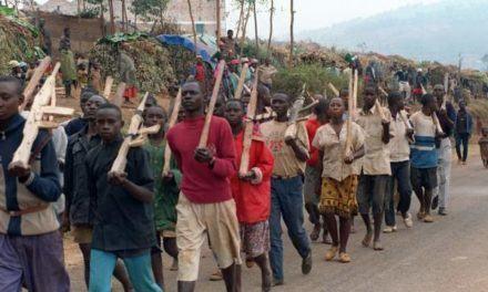 Le Sénat demande l'approbation d'une politique pour lutter contre le déni du Génocide