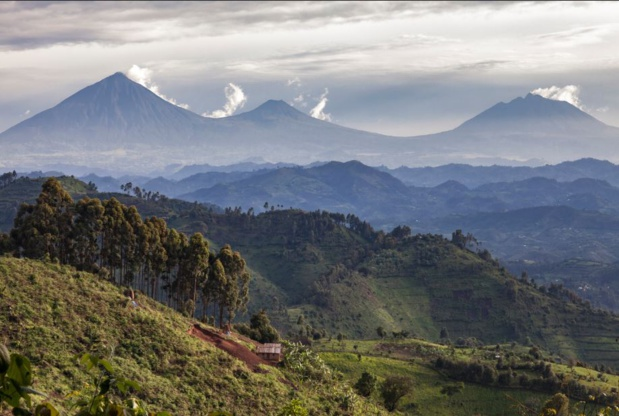 Le Rwanda, nouvelle destination en vogue ?