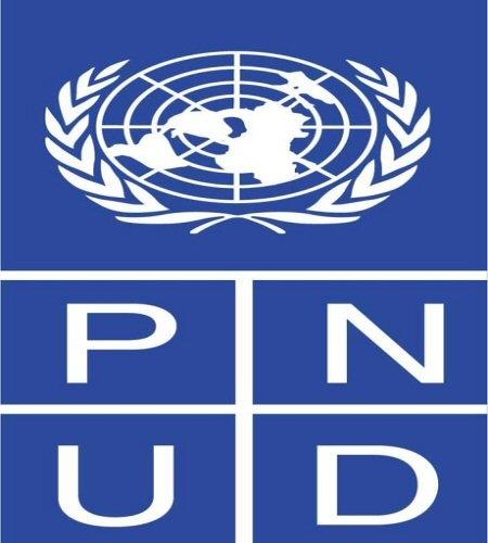 Le PNUD a lancé une plateforme-portail panafricaine pour les entrepreneurs