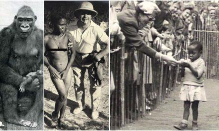 En 1958, les belges ont exposé des Congolais dans un zoo humains