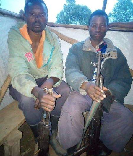 La société civile du Sud-Kivu alerte sur un mouvement des rebelles rwandais en provenance du Nord-Kivu