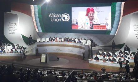 Sommet de l'Union africaine : à Niamey, le Nigeria et le Bénin intègrent la Zlec