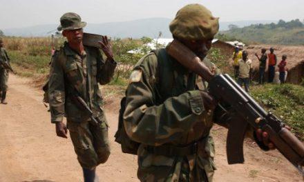 le chef militaire des FDLR, Sylvestre Mudacumura, tué dans le Nord-Kivu