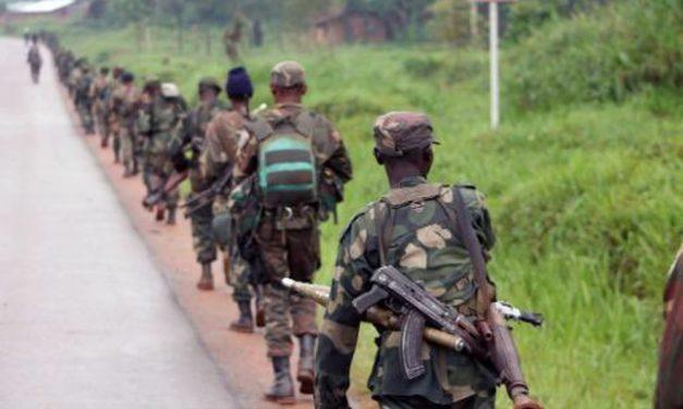 Non à la réethnisation des Grands Lacs : des mouvements rebelles rwandais crient et ont peur d'être dégommés