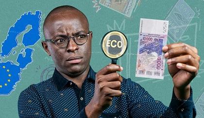 CFA – ECO :  Déclaration d'Intellectuels Africains sur les Réformes du Franc CFA