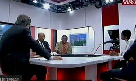 Qui sont les noirs de France? – Le débat