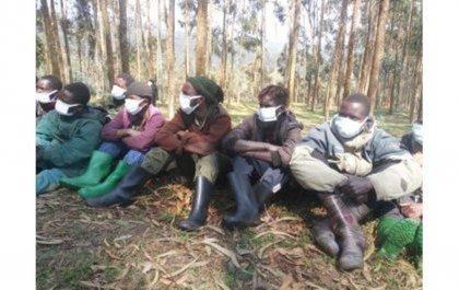 Les RDF (Forces Rwandaises de Défense) ont paradé 19 combattants de RED