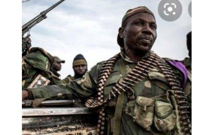 Bazamanza, un colonel CNRD-FLN capturé par les FARDC et extradé au Rwanda