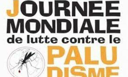 L'OMS déplore les 384 000 décès évitables dus au paludisme recensés en Afrique en 2020