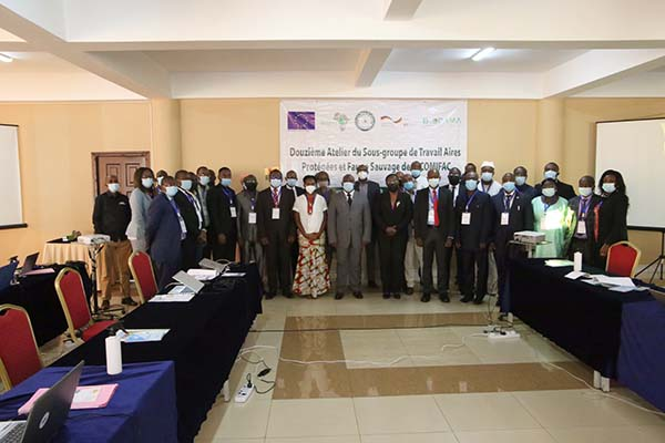 Des experts à Kigali discutent de l'avenir pour la Faune sauvage et les Aires protégées en Afrique Centrale